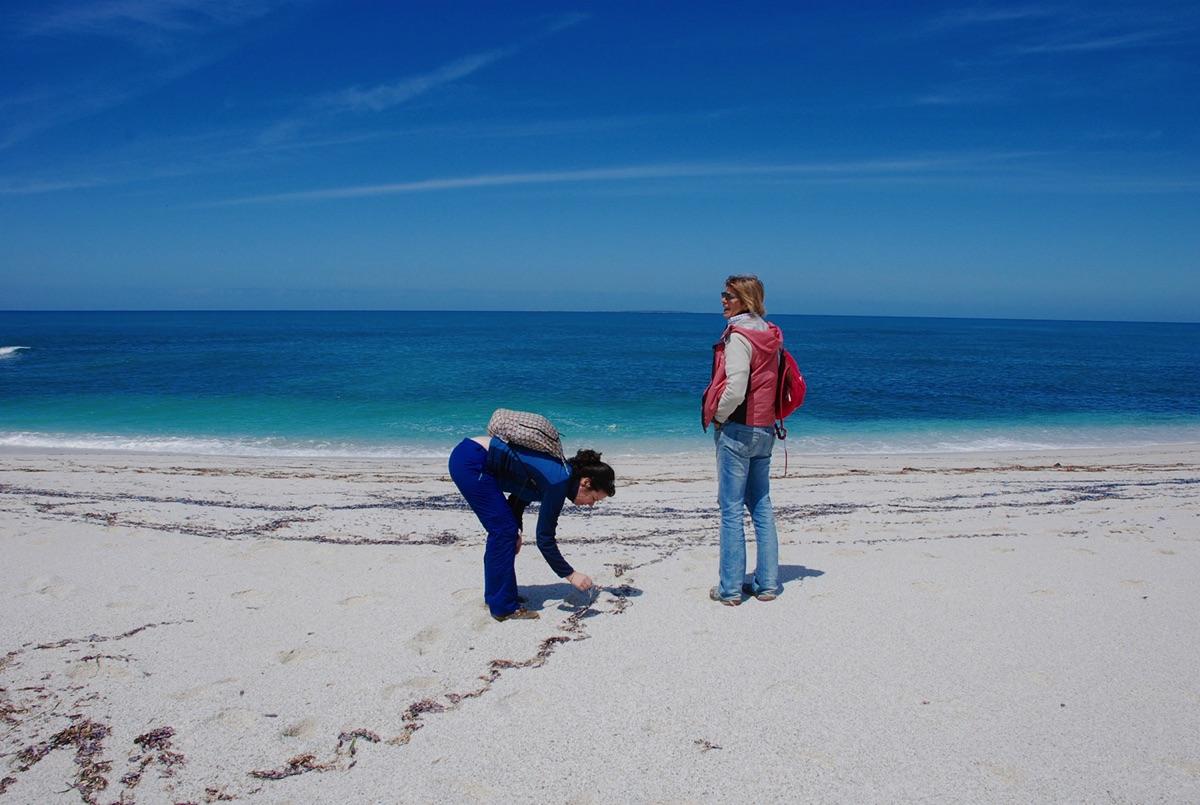 due donne in spiaggia mentre camminano sulla sabbia