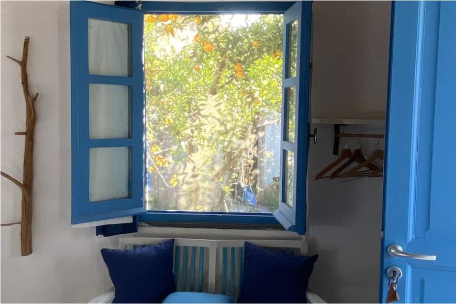 una camera da letto con una finestra blu che si affaccia su un giardino ricco di verde