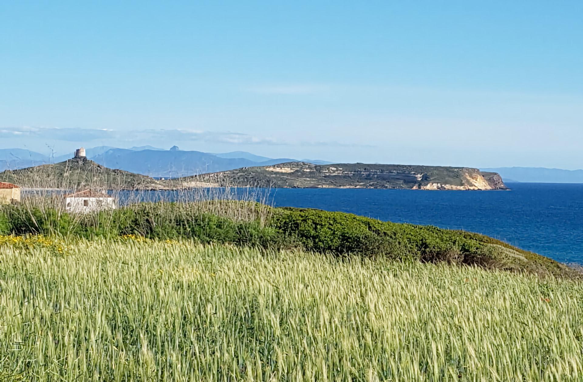 Panorama sul mare del Sinis visto da un prato verde